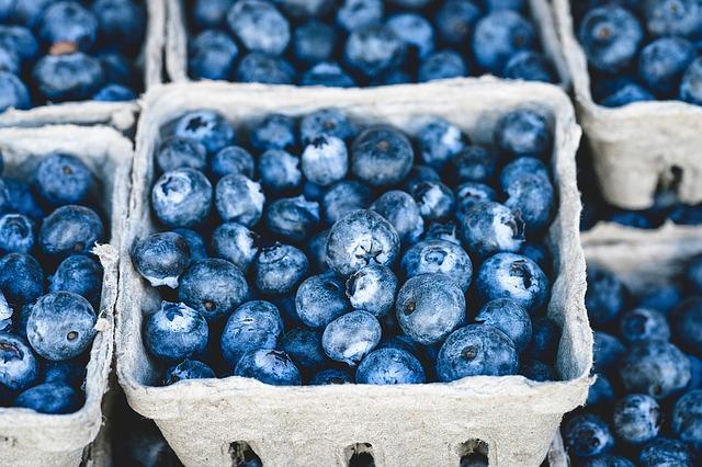 Ernährungsgrundlagen und Omega 3 Säuren